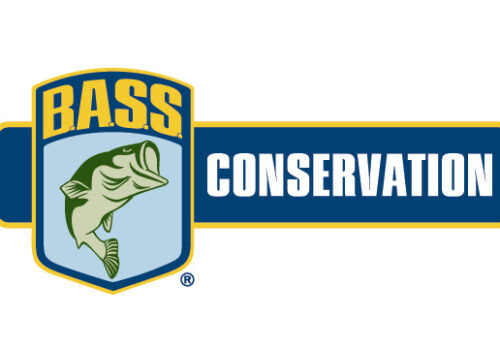 2019 Ontario B.A.S.S. Nation Tournament Fish Care Study