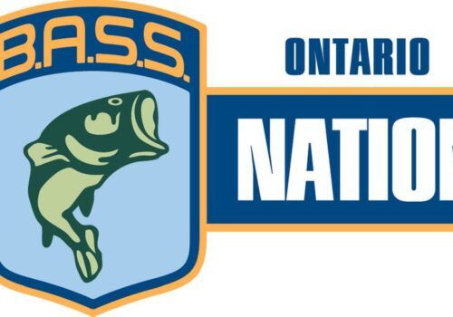 Anti-Racism and Inclusiveness in The Ontario Bass Nation
